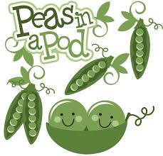 two peas in a pod picture frame peas in a pod svg scrapbook collection peas svg file friendship