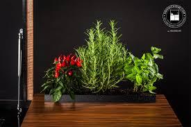 plante cuisine accessoire cuisine jardinière plantes aromatiques romarin menthe