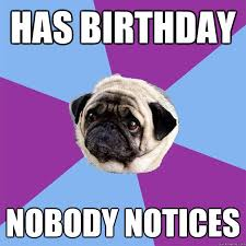 Pug Birthday Meme - has birthday nobody notices lonely pug quickmeme