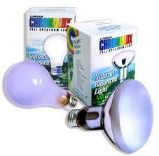 spectrum light bulb 100 watt
