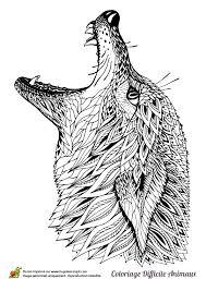 dessin à colorier d u0027une tête de loup