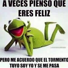 imagenes groseras rana rene 14 best rana rene images on pinterest frogs jokes quotes and rumi