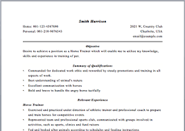 Sales Person Resume Sample Essays On Role Of Chemistry In Environmental Protection How To