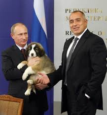 present for putin a puppy named verny