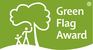 Green Day Flag Green Flag People U0027s Choice Award