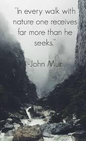 HEALING & ACTIVATING POWER OF NATURE John Muir Quotes