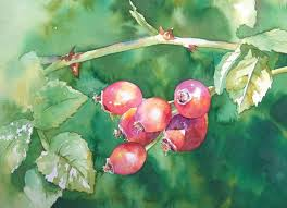 349 best learn watercolour images on pinterest watercolor