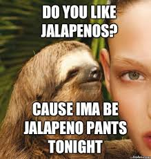 Sexy Sloth Meme - the 25 greatest sloths the internet has ever seen sloth humor