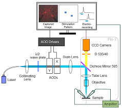 precise spatiotemporal control of optogenetic activation using an