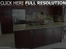 kitchen cabinet remodel ideas christmas lights decoration kitchen cabinet refacing pictures options tips and ideas inside refacing kitchen cabinets ideas for refacing kitchen