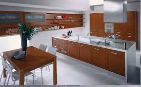 Custom Contemporary Kitchen Cabinets by Contemporary Kitchen Cabinets For A Posh And Sleek Finish