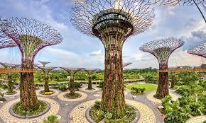 vertical gardens vertical gardens and green facades in the city smart magazine