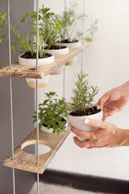Herb Garden Planters by 230 Best Hanging Planters Images On Pinterest Hanging Planters