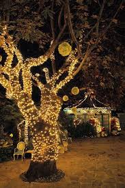 57 best outdoor string lights images on