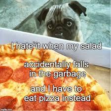 Sad Pug Meme - pug imgflip