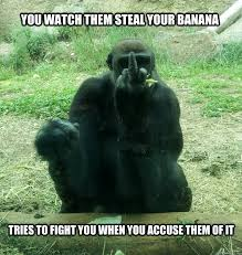 Funny Gorilla Meme - overly defensive gorilla memes quickmeme