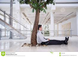 businessman relaxing tree in office royalty free stock