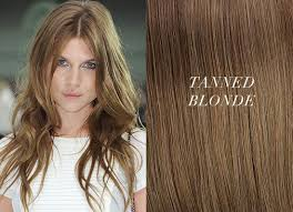 hair color light to dark dark blonde light brown hair color f43 on wow image selection with