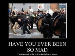 So Mad Meme - have you ever been so mad meme memes pinterest mad meme