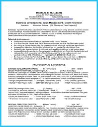 Sle Resume Business Development Director buy essays uk cheap indianapolis career change agency the