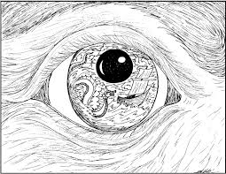 free eye coloring pages getcoloringpages big eye animal pages