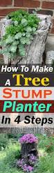 How To Make A Wood Stump End Table by Best 25 Tree Stumps Ideas On Pinterest Tree Stump Furniture
