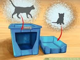 My Cat Peed On My Bed 3 Ways To Retrain A Cat To Use The Litter Box Wikihow