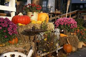 Fall Outdoor Decoration for Your Front Yard