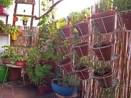 gem se pflanzen balkon fräuleins wunderbare welt mai 2015