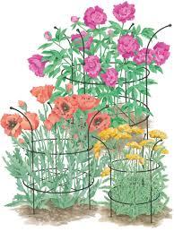 plant a cutting garden cutting garden flowers gardener u0027s supply