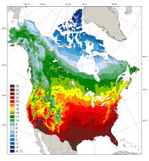United States Temp Map by 1 Temperature North American Climate Integration And Diagnostics