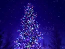 oh christmas tree and its history youtube