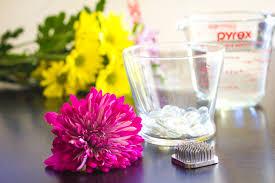 Flowers Glass Vase Diy Submerged Flower Arrangements