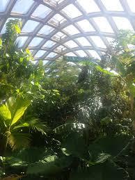denver botanic gardens fun denver attractions