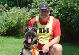 Blind Dog And His Guide Dog Meet Klinger The First Certified Running Guide Dog Runner U0027s World
