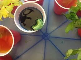 ms larose u0027s 2nd grade celery in food colored water science