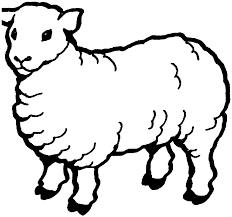 sheep fur thick strong coloring pages for kids ekr printable