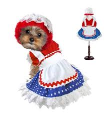Halloween Costumes Small Dogs Small Dog Costumes Halloween Costumes Clothes Small Dogs