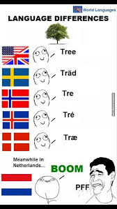 Language Differences Meme - linguistic differences helicopter german memes and language