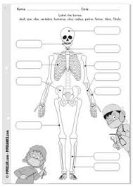 label the bones free printable activity fall activities