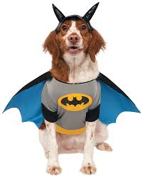 matching dog and owner halloween costumes amazon com dc comics pet costume x large batman pet supplies
