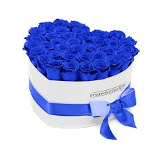 white blue roses blue roses in a white box coeur collection symphonie des