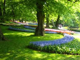 keukenhof flower gardens keukenhof dutch tulip festival spring garden conscious travel