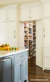 Walk In Pantry Concealed Behind Cabinet Doors Transitional Kitchen - Bifold kitchen cabinet doors