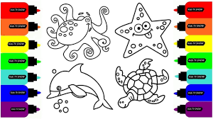 learn colors with picture octopus dolphin turtle and starfish