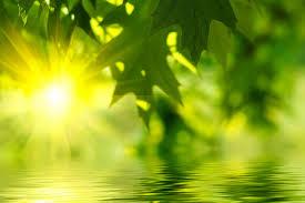 fresh air radiate daily