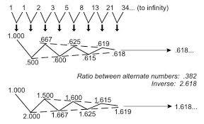 golden ratio dna spiral fibonacci in nature the golden ratio and the golden spiral the