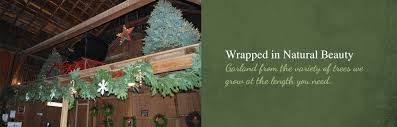 free delivery christmas trees wreaths garland fresh