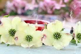 imagenes flores relajantes conos de incienso y velas relajantes queman detrás de un papel de