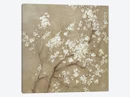 white cherry blossom white cherry blossoms i canvas wall by danhui nai icanvas
